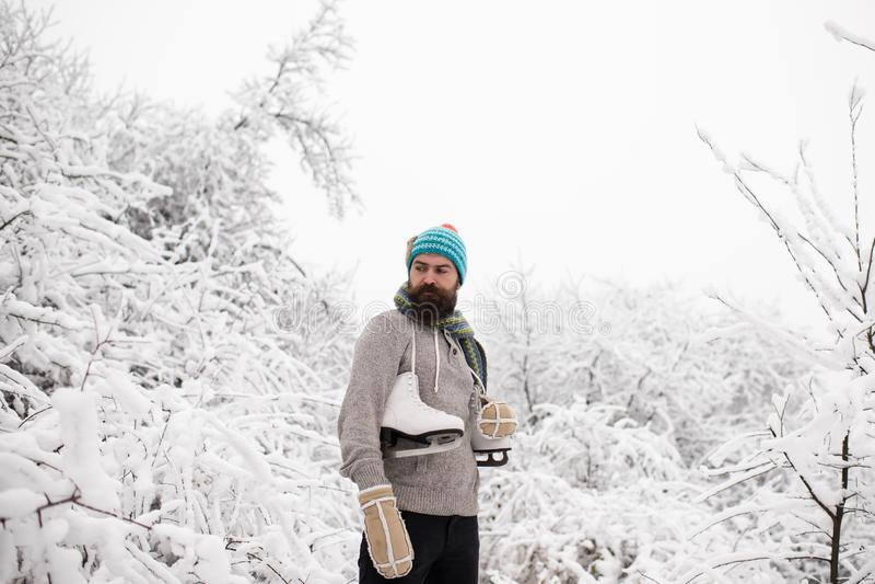 Vintersporten och vilar, jul arkivbild