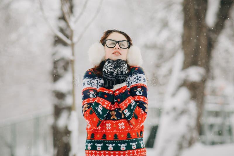 Vinterståenden av kvinnan i den trendiga woolen stack hatthalsduken och tröjan, kall vintertid, flicka fryste royaltyfri foto