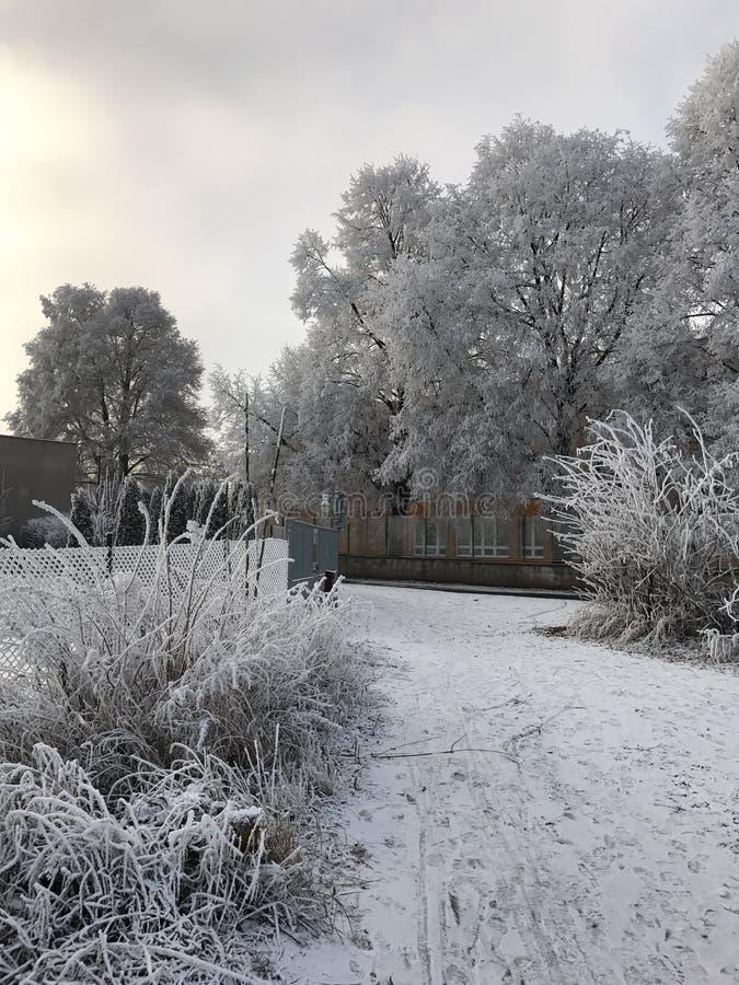 Vinterstadlandskap arkivbilder