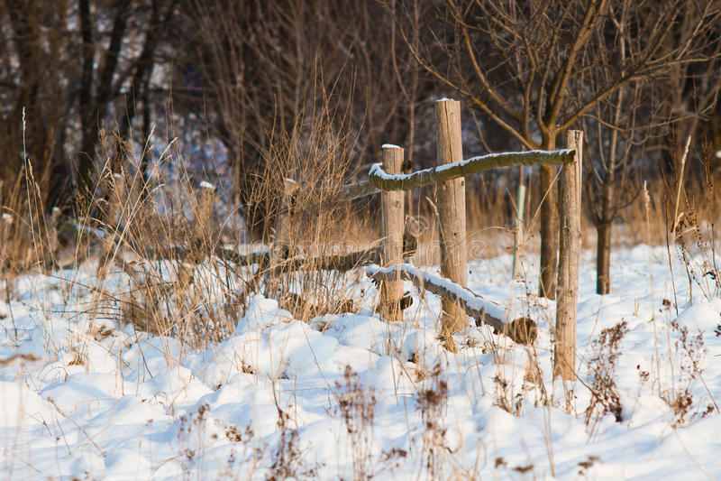 Download Vinterstaket fotografering för bildbyråer. Bild av gräs - 27280165