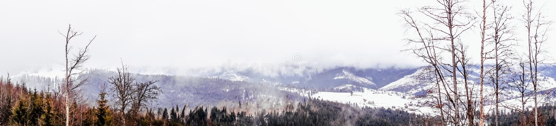 Vintertur till de Carpathian bergen Panorama av kanten arkivbild