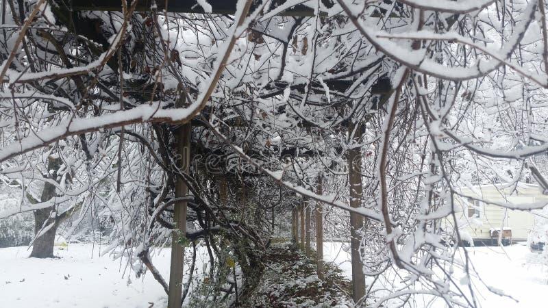 Vinterunderland royaltyfri bild