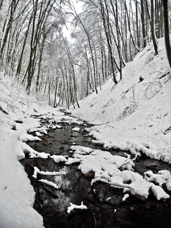 Vinterunderland royaltyfri fotografi