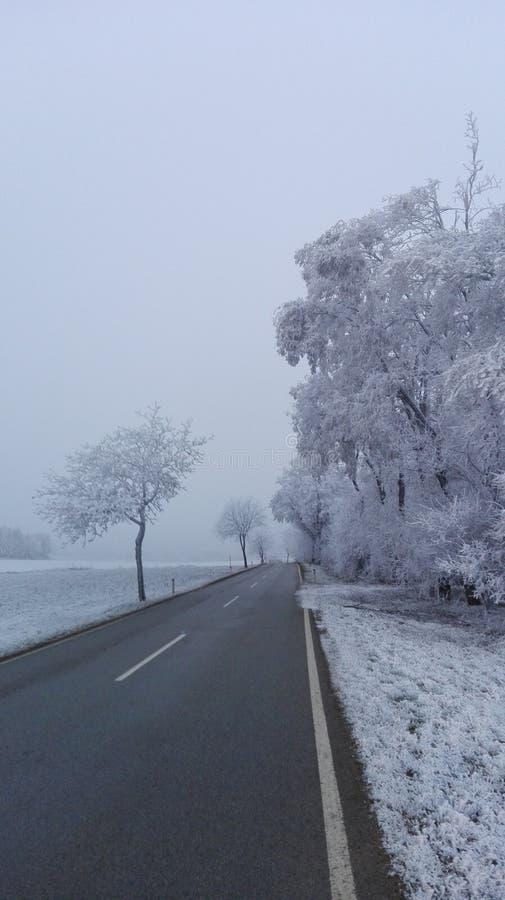 Vinterunderland 4 arkivbild