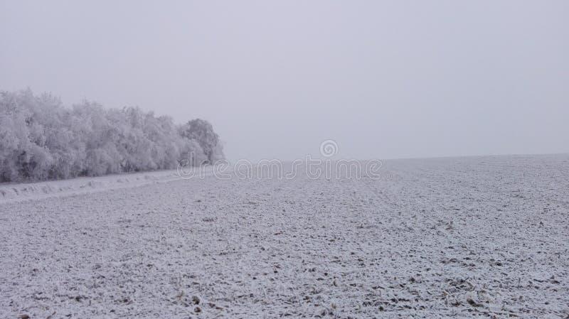 Vinterunderland 18 fotografering för bildbyråer