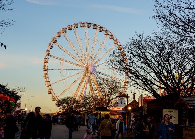 Vinterunderland i Hyde parken, London royaltyfria bilder