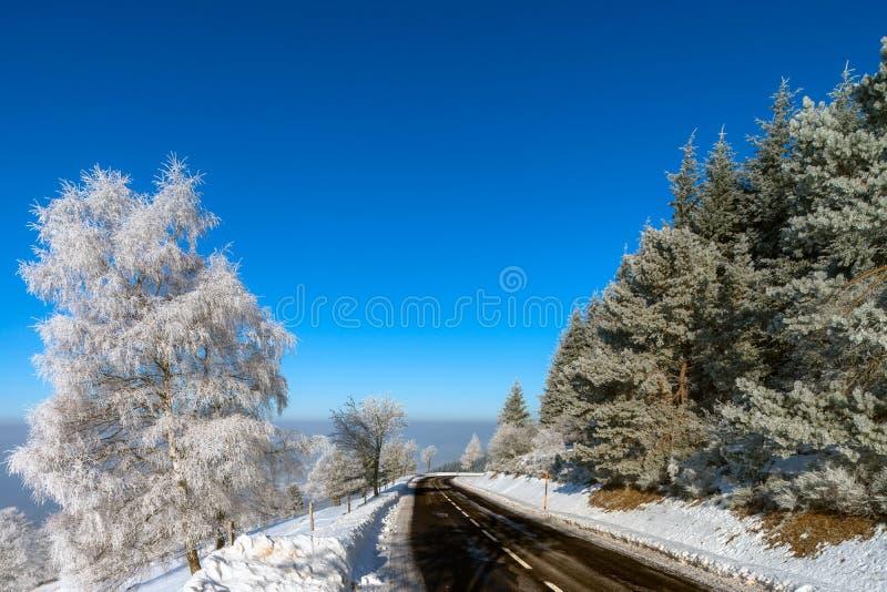 Vinterväg i bergen Djupfrysta träd och blå himmel Soligt D arkivbild