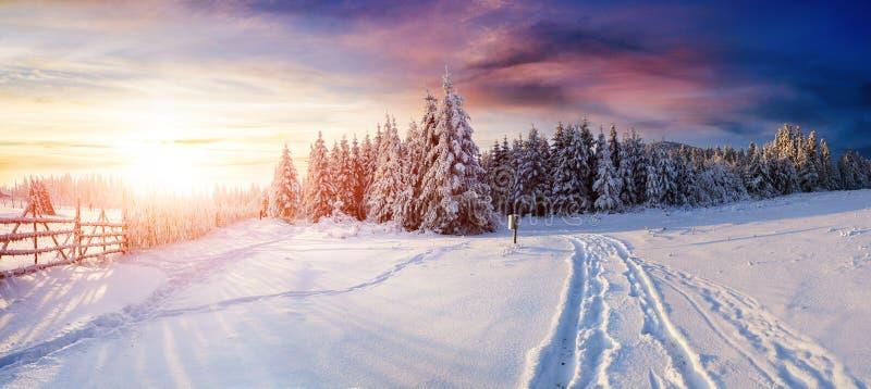 Vintervägen royaltyfri fotografi