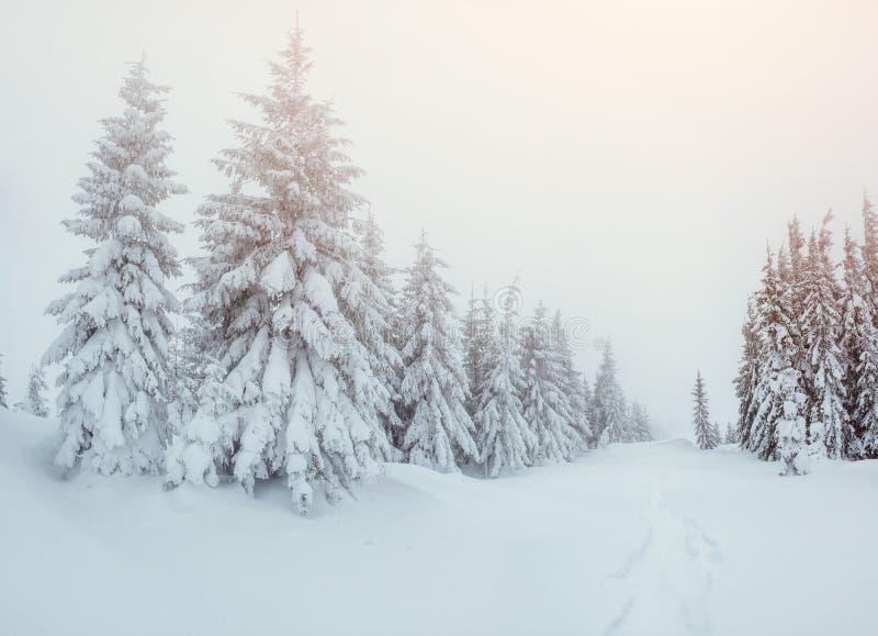 Vintervägen arkivbild