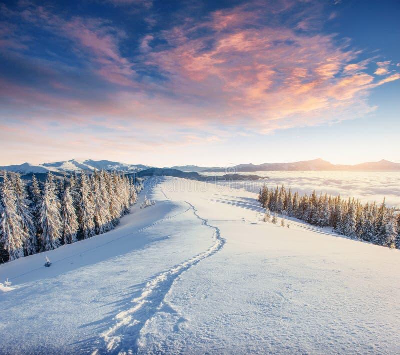 Vintervägen dramatisk plats Carpathian Ukraina, Europa fotografering för bildbyråer