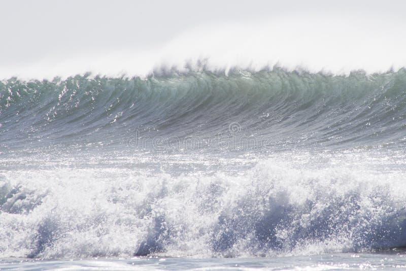 Vintervåg i Gran Canaria, kanariefågelöar fotografering för bildbyråer