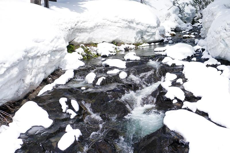 Vintervårmelt fotografering för bildbyråer