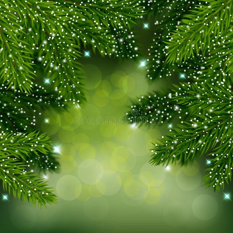 Vintervektorbakgrund med vintergröna filialer Elegant kortmall vektor illustrationer