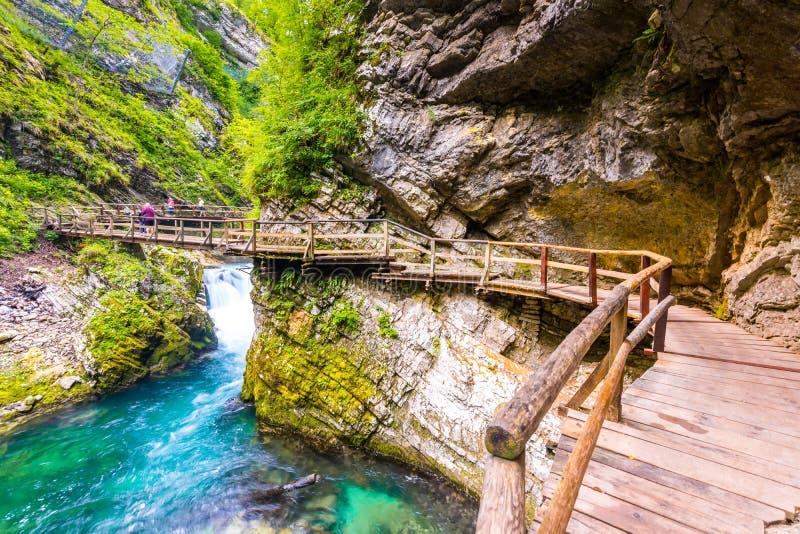 Vintgar-Schlucht, Slowenien Der Radovna-Fluss mit hölzernen Wegen und Brücke oben Schöner Wasserfluß in Nationalpark Triglav wat lizenzfreie stockfotografie