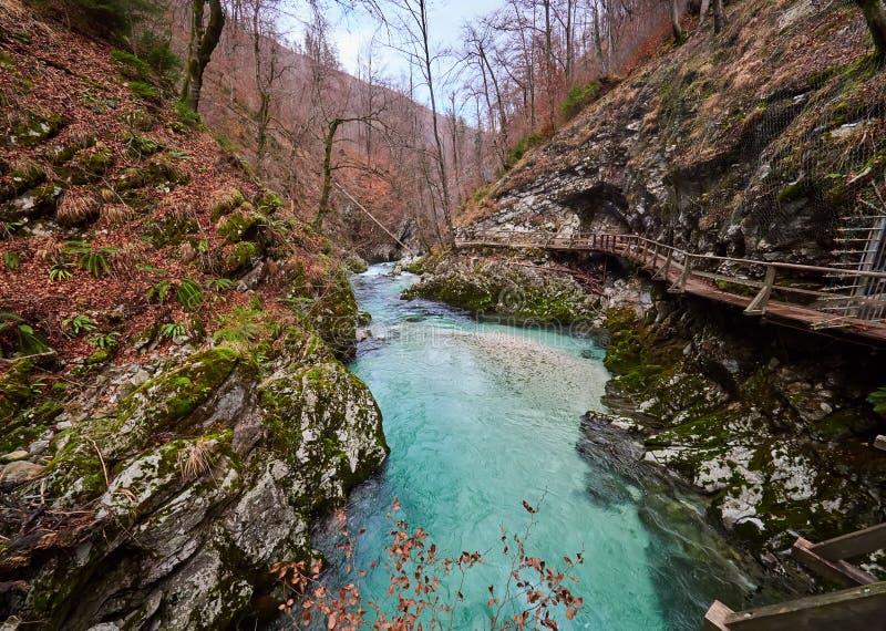 Vintgar-Schlucht und Green River, geblutet, Triglav- Slowenien stockbild