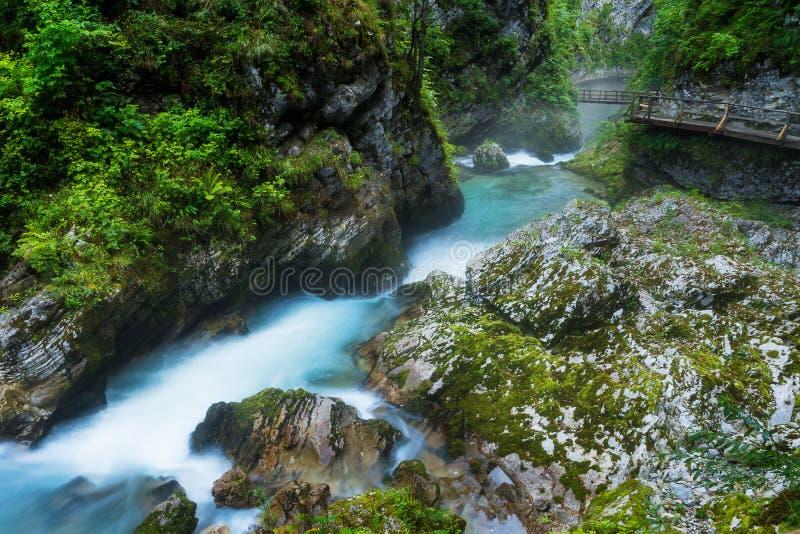 Vintgar-Schlucht und Radovna-Fluss mit Gehweg und Felsen nahe bluteten in Slowenien lizenzfreies stockbild