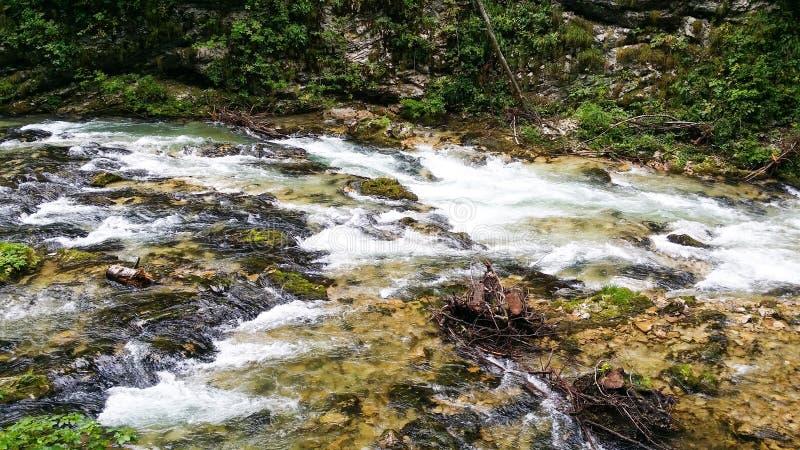 Download Vintgar Slovenia stock image. Image of nature, river - 43554997