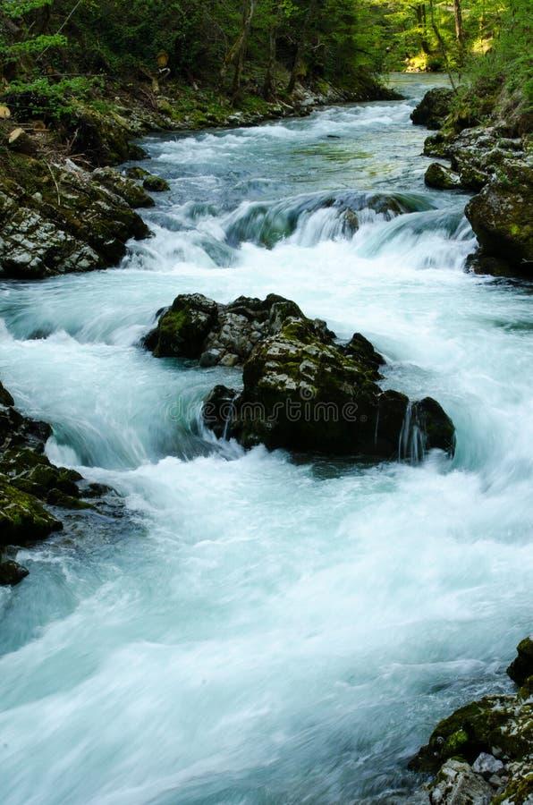 Vintgarkloof Mini Waterfalls royalty-vrije stock foto's