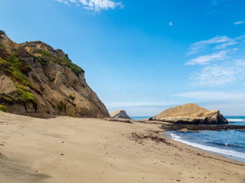 Vinthunden vaggar stranden royaltyfria foton
