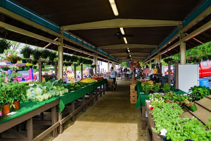 Vinton Farmers Market. Vinton, VA – April 29th: Fresh fruits, vegetables and flowers at the Vinton Farmers Market. Vinton, VA on April 29th, 2017 royalty free stock image