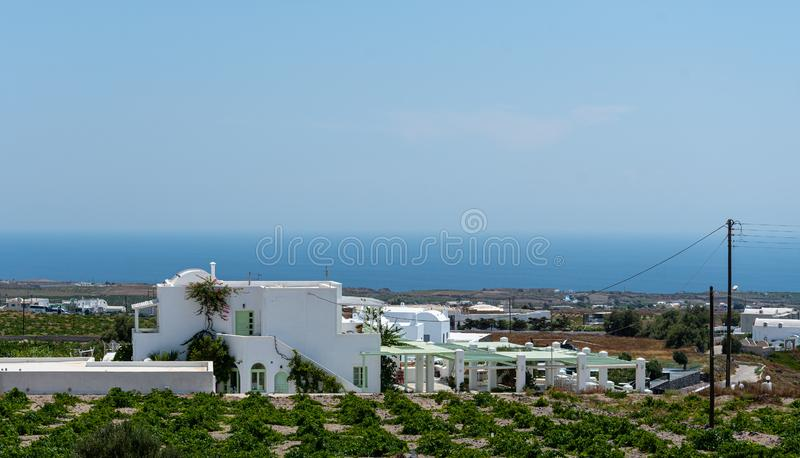 Vinyard and Vines. A whitewassh vinyard house surrounded by grape vines with the Aegean Sea in the distance stock photography