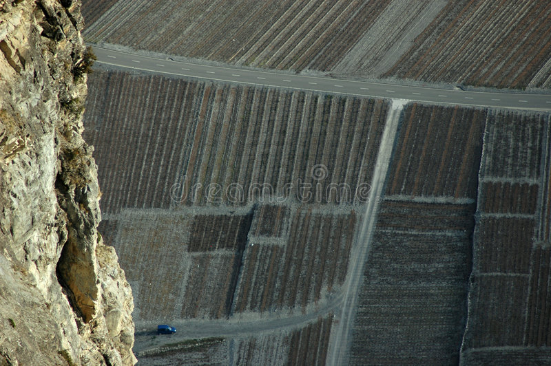 Vinyards dans la vallée du Rhône photographie stock libre de droits