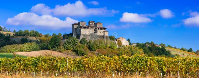 Vinyards i kasztele Włochy, Torrechiara & x28 -; blisko Parma& x29; obrazy royalty free