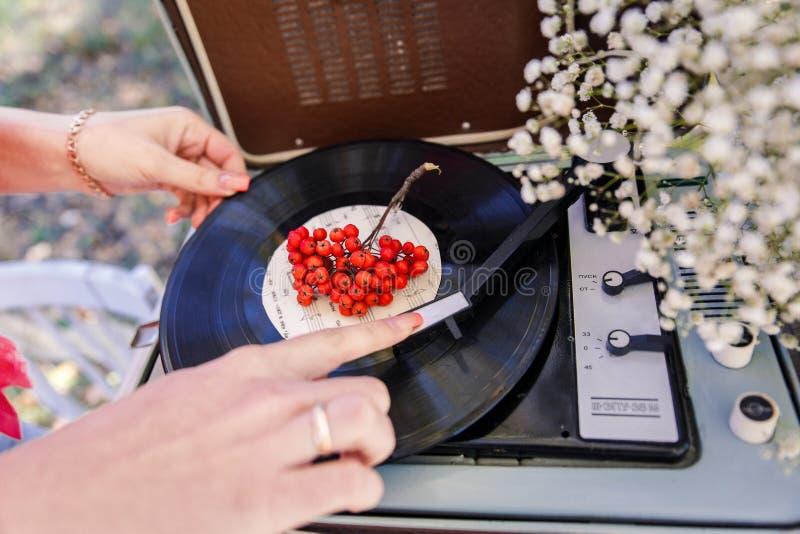 Vinyl en lijsterbes royalty-vrije stock afbeeldingen