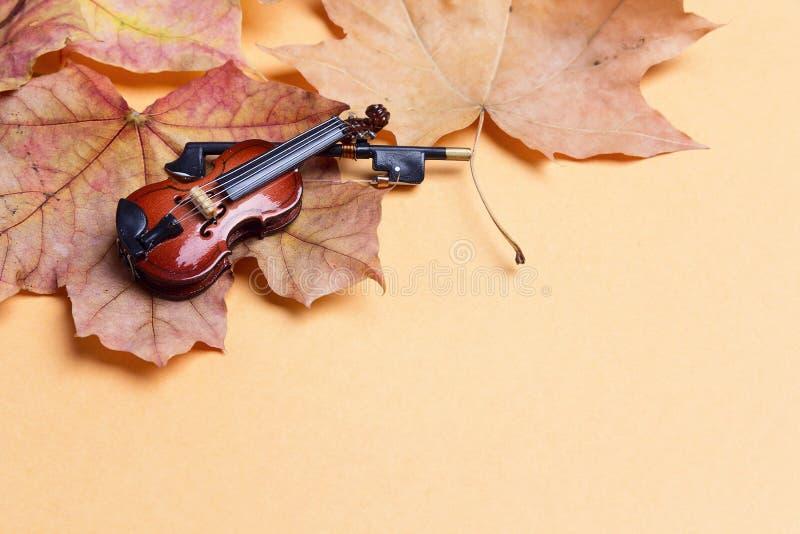 Violín miniatura con las hojas de arce del otoño y el espacio de la copia imagen de archivo