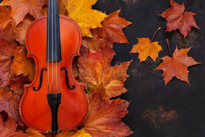 Violín viejo en fondo amarillo de las hojas de arce del otoño imágenes de archivo libres de regalías