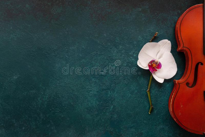 Violín viejo y flor blanca de la orquídea Visión superior, primer en fondo concreto verde foto de archivo libre de regalías