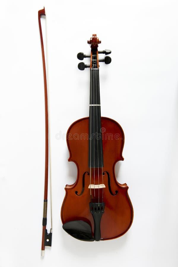 Viola stockbilder