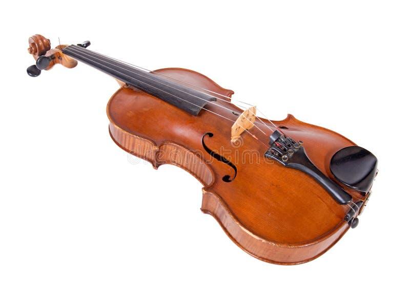 Viola isolada no fundo branco foto de stock royalty free