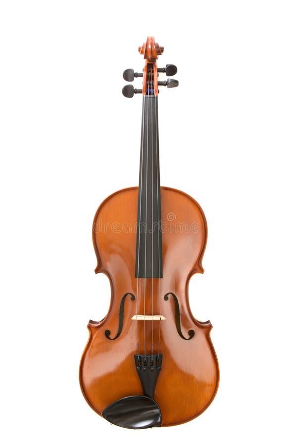 viola skrzypce. zdjęcia stock