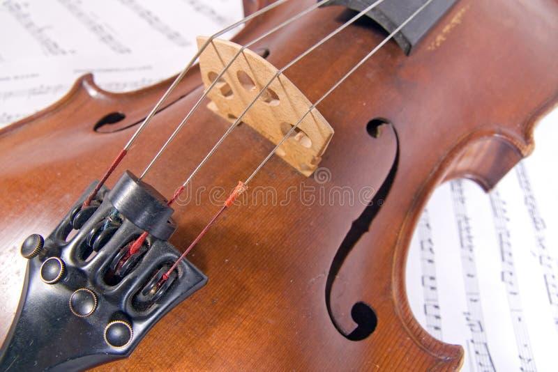Viola velha foto de stock royalty free