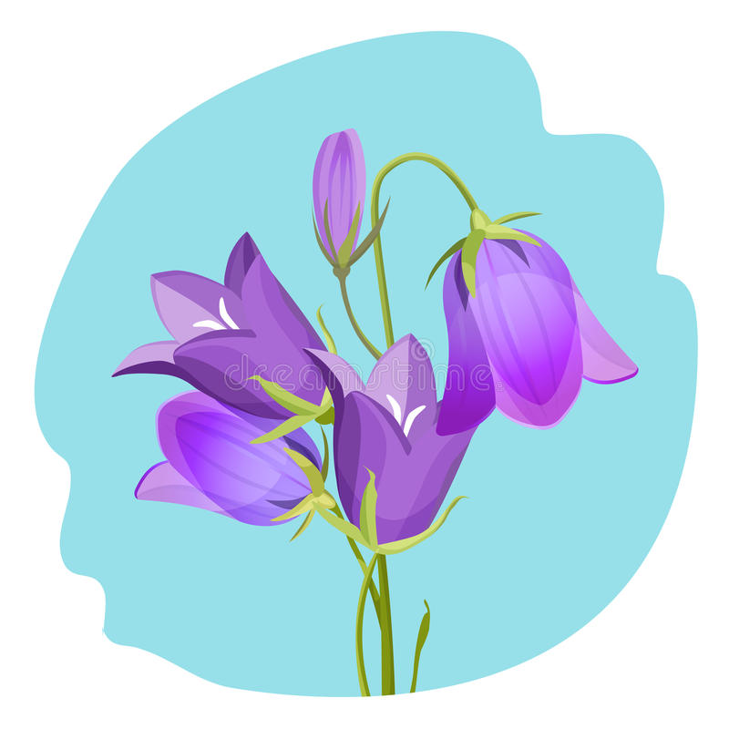 Viola violet flowering plant realistic vector illustration isolated. On blue background. Spring flower symbol in flat style stock illustration