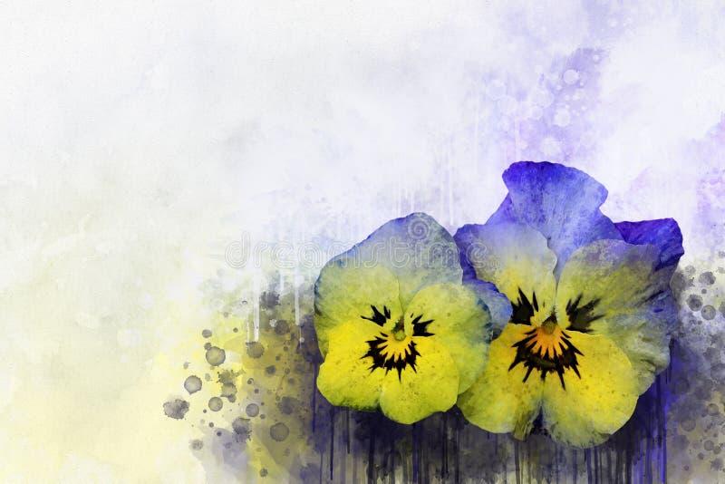 Viole del pensiero dell'acquerello Illustrazione floreale dei fiori della viola su un fondo d'annata Per progettazione, la stampa royalty illustrazione gratis