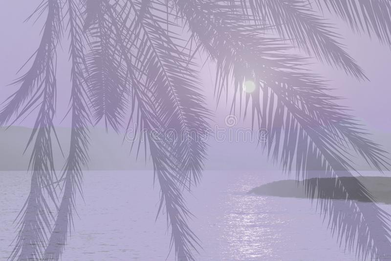 Violet abstract palm tree ocean landscape at sunset. Composite, Mallorca, Spain stock photo