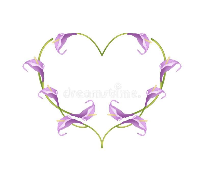 Violet Anthurium Flowers bonita na forma do coração ilustração royalty free