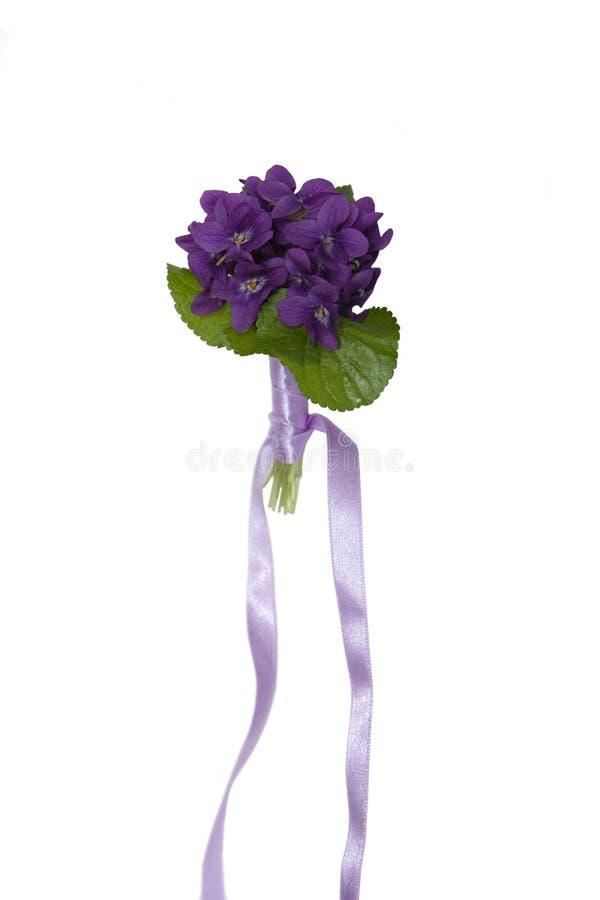 Violet bouquet stock images