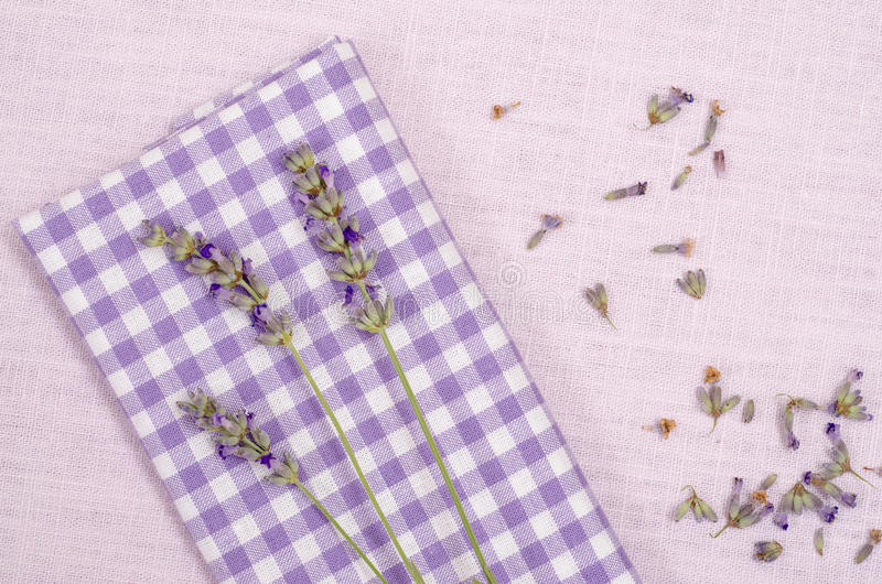 Download Violet Checkered Cloth With Lavender Stock Image - Image: 34271571