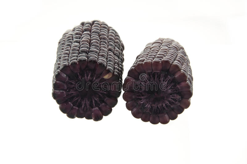 Violet Color Corn Royalty Free Stock Photography