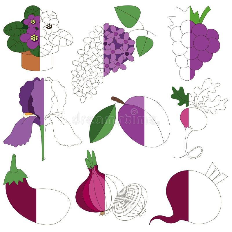 Violet Color, das große durch Beispiel halb gefärbt zu werden Kinderspiel, lizenzfreie abbildung