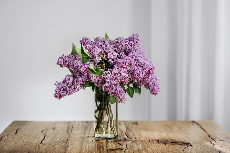 Violet coloured lilac twigs in a transparent glass vase stock photos