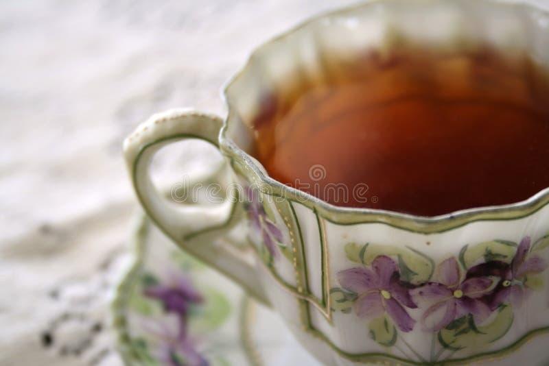 violet för tea 02 royaltyfri bild