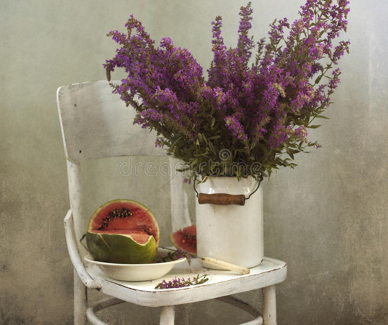 Download Violet flowers stock photo. Image of white, garden, still - 21032482