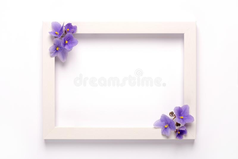 Violet flowers, photo frame on a white background. royalty free stock photography