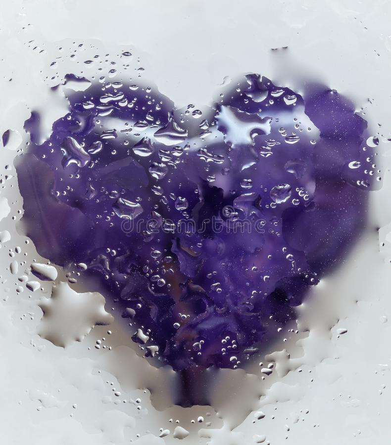 Violet Heart Isolated On White-Achtergrond 2 stock fotografie