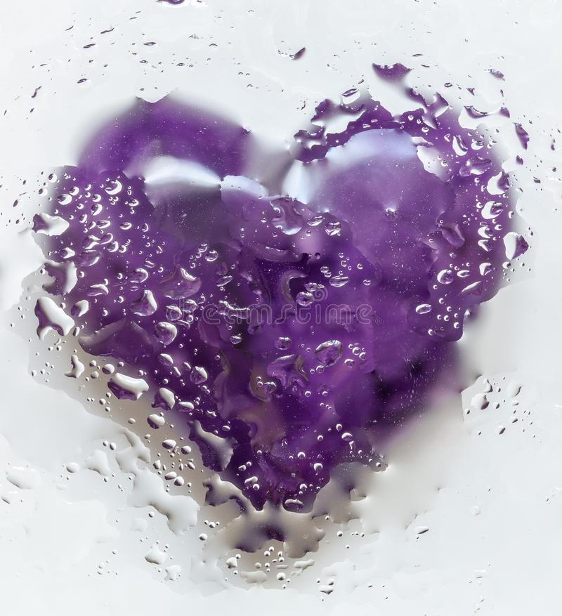 Violet Heart Isolated On White-Achtergrond 3 stock foto