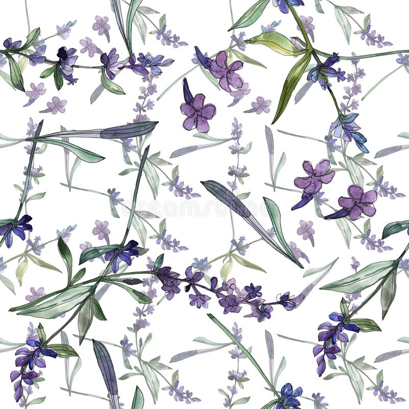 Violet lavender floral botanical flowers. Watercolor background illustration set. Seamless background pattern. royalty free illustration